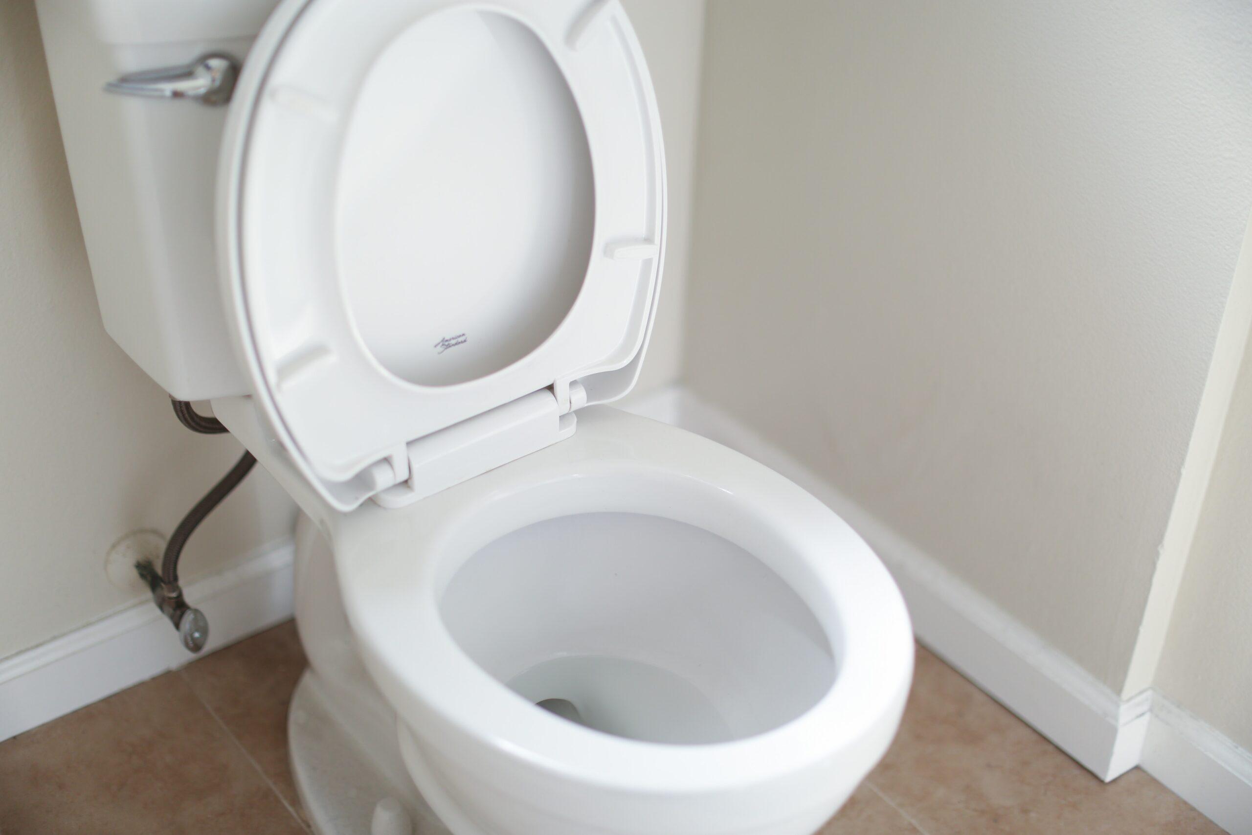 wc che perde milano